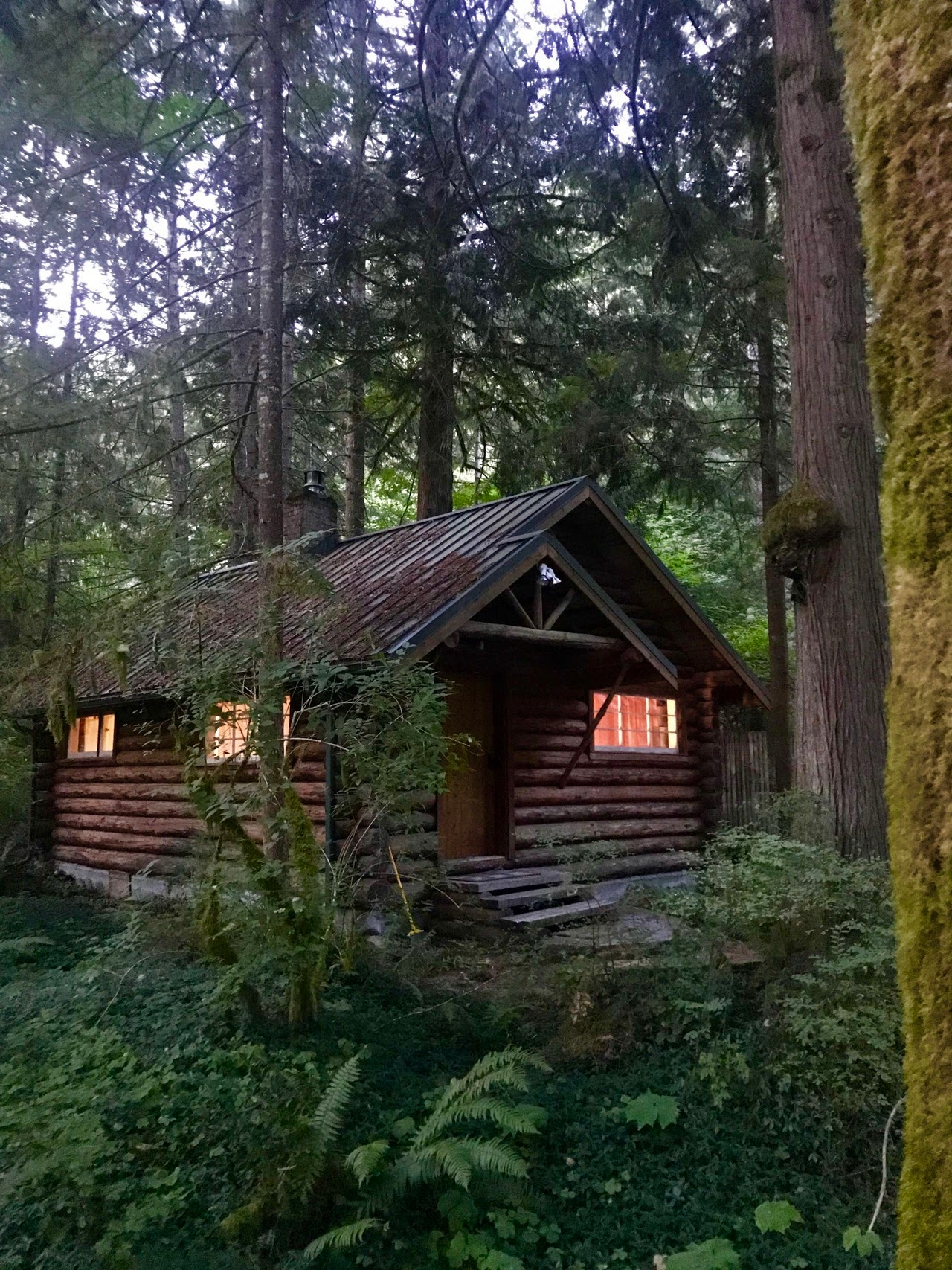Creekside Cabin